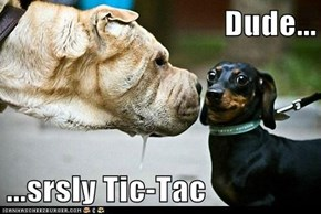Dude...  ...srsly Tic-Tac