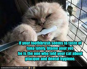 if your toothbrush seems to taste of tuna lately, blame your vet. he is the one who told your cat about placque and dental hygiene.