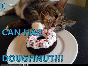 I CAN HAZ DOUGHNUT!!!