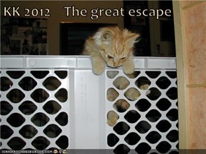 KK 2012    The great escape