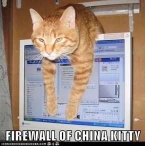 FIREWALL OF CHINA KITTY