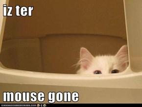 iz ter  mouse gone