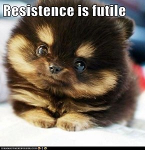 Resistence is futile