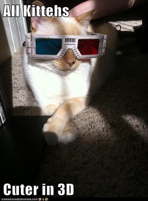 All Kittehs  Cuter in 3D
