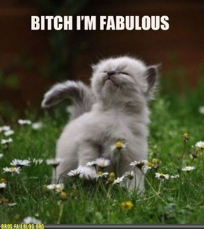 Manimals: I'm Fab, You're Drab