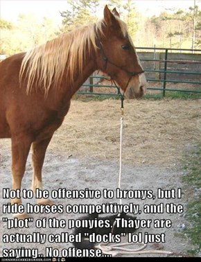 "Not to be offensive to bronys, but I ride horses competitively, and the ""plot"" of the ponyies, Thayer are actually called ""docks"" lol just saying.. No offense...."