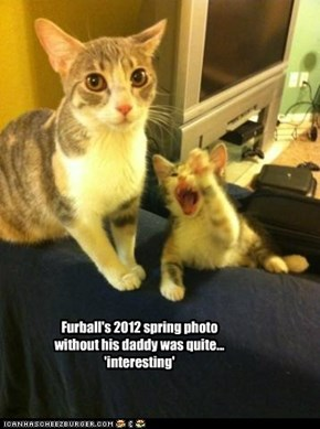 Furball's 2012 spring photo without his daddy was quite... 'interesting'