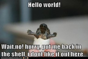 Hello world!  Wait,no! hurry, put me back in the shell, i dont like it out here