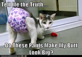 Tell Me the Truth....  Do These Pants Make My Butt Look Big?