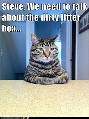 Steve, We need to talk about the dirty litter box...