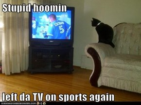 Stupid hoomin  left da TV on sports again
