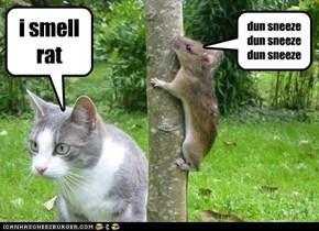 i smell rat