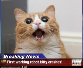 Breaking News - First working robot kitty crashes!