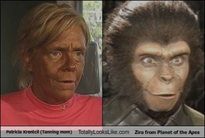 Patricia Krentcil (Tanning mom) Totally Looks Like Zira from Planet of the Apes