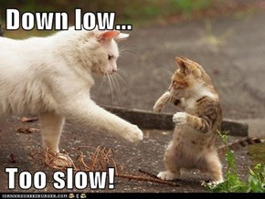 Down low...  Too slow!