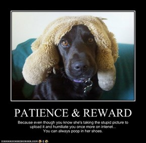PATIENCE & REWARD