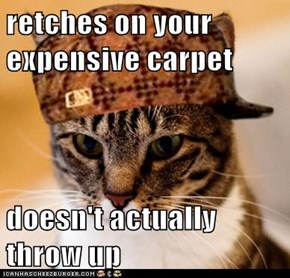 retches on your expensive carpet  doesn't actually throw up