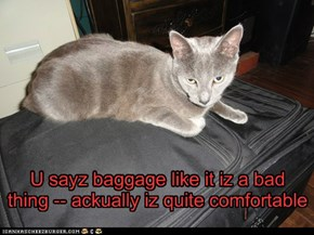 I think they iz talking about a different kind of baggage, Theo