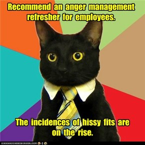Recommend  an  anger  management refresher  for  employees.