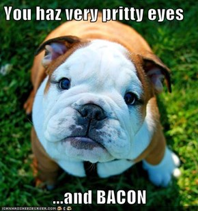 You haz very pritty eyes  ...and BACON
