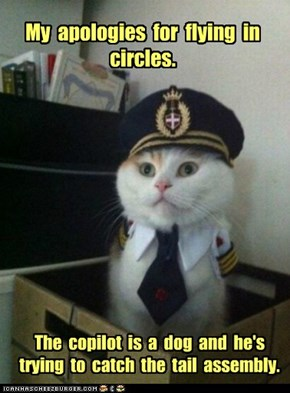 My  apologies  for  flying  in  circles.