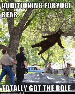 AUDITIONING FORYOGI BEAR  TOTALLY GOT THE ROLE