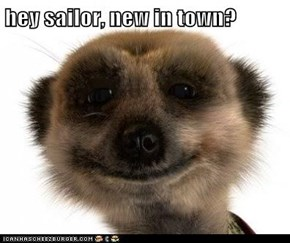 hey sailor, new in town?
