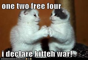one two free four  i declare kitteh war!