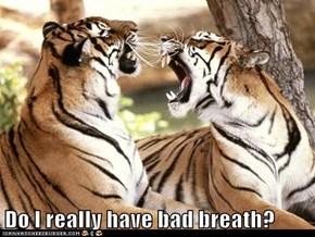 Do I really have bad breath?