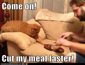 Come on!  Cut my meal faster!