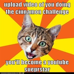 upload video of you doing the cinnamon challenge   you'll become a youtube sueprstar