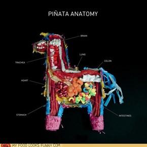 Pinata Guts
