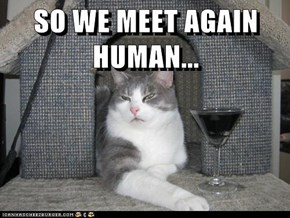 SO WE MEET AGAIN HUMAN...