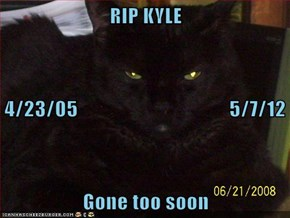 RIP KYLE 4/23/05                                     5/7/12 Gone too soon