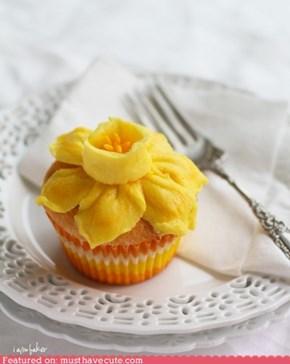 Epicute: Daffodil Cupcake