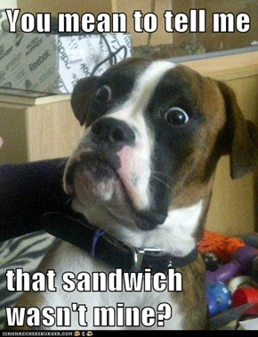 You mean to tell me  that sandwich wasn't mine?