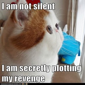 I am not silent   I am secretly plotting my revenge
