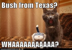 Bush from Texas?  WHAAAAAAAAAAA?