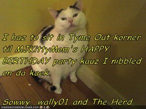 I haz to sit in Tyme Out korner til MJKittyMom's HAPPY BIRTHDAY party kauz I nibbled on da kaek.  Sowwy, wally01 and The Herd