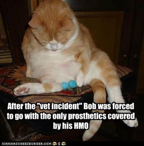 "After the ""vet incident"" Bob was forced to go with the only prosthetics covered by his HMO"