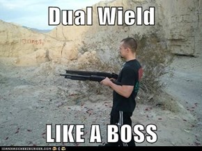 Dual Wield  LIKE A BOSS