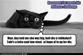 evan Basement Cat iz impressed by Aunt Bertha