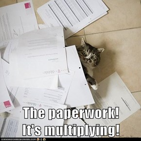 The paperwork!          It's multiplying!