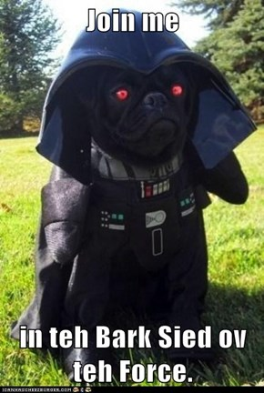 Join me  in teh Bark Sied ov teh Force.