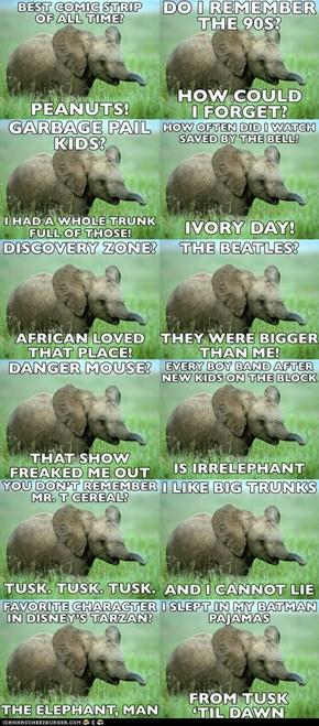 Nostalgia Elephant