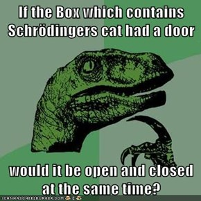 If the Box which contains Schrödingers cat had a door  would it be open and closed at the same time?