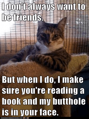 I don't always want to be friends.  But when I do, I make sure you're reading a book and my butthole is in your face.