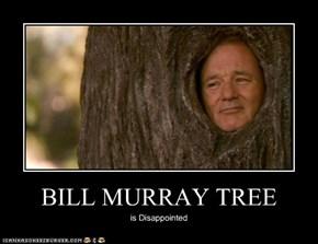 BILL MURRAY TREE
