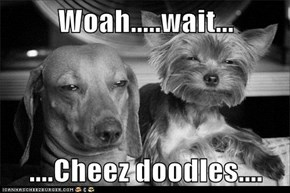 Woah.....wait...  ....Cheez doodles....