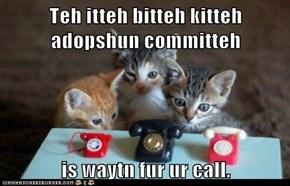 Teh itteh bitteh kitteh adopshun committeh  is waytn fur ur call.
